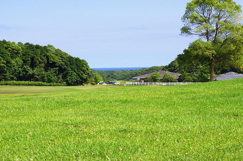 広い芝生の敷地内から見える景色