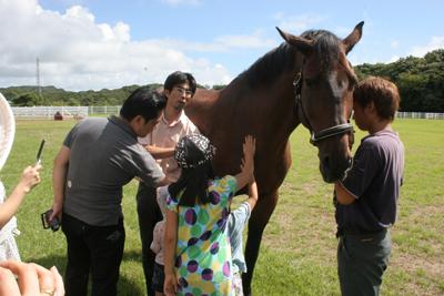 馬とふれあう日