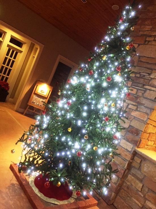 「12月10日 ~ ホテルロビーのクリスマスツリー ~ 」