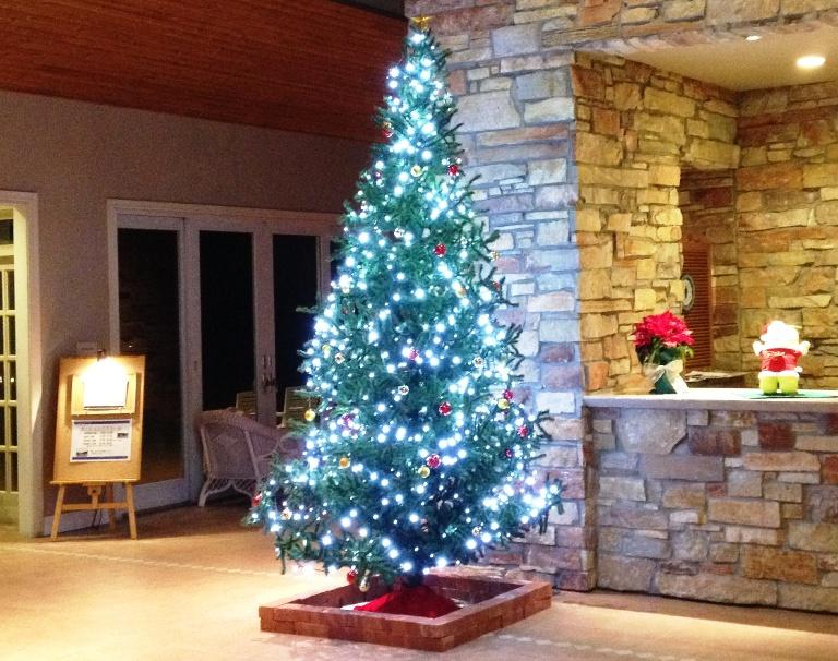 「12月16日 ~ センタープレイスのクリスマスツリーです! ~ 」