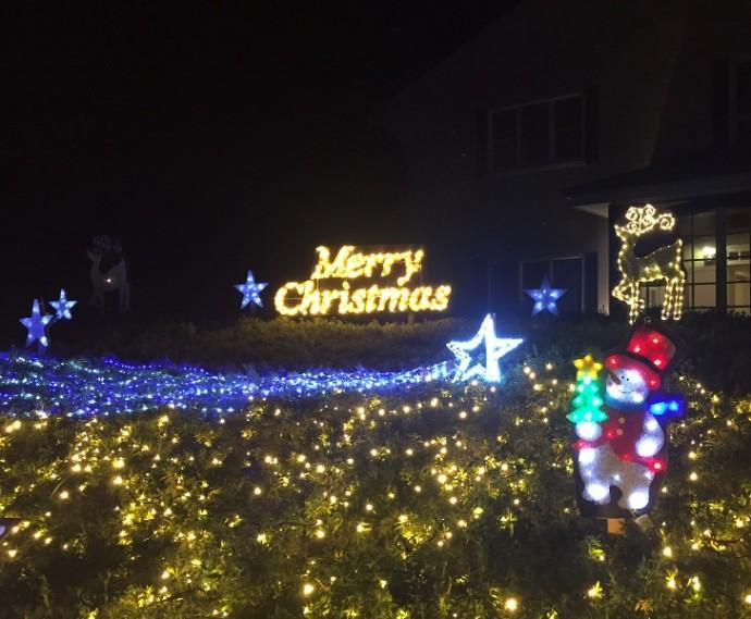 「 ~ クリスマスイルミネーション ~ 」