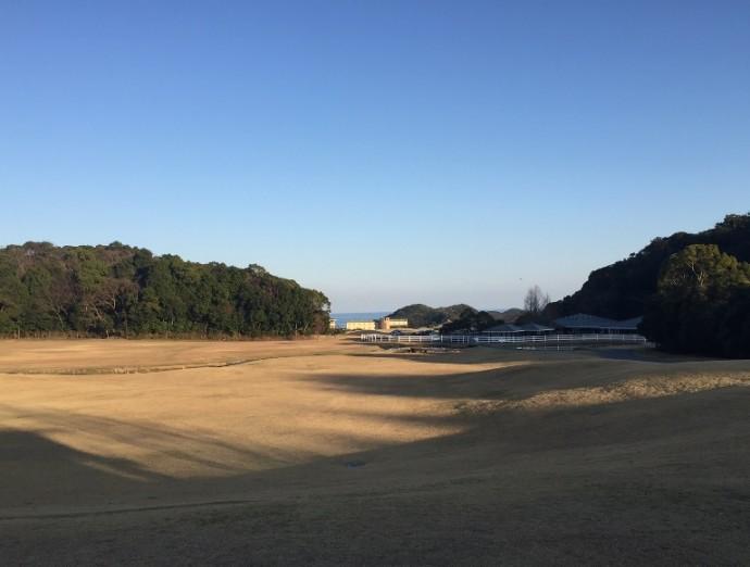 「 ~ 研修棟前の芝生からの眺め ~ 」