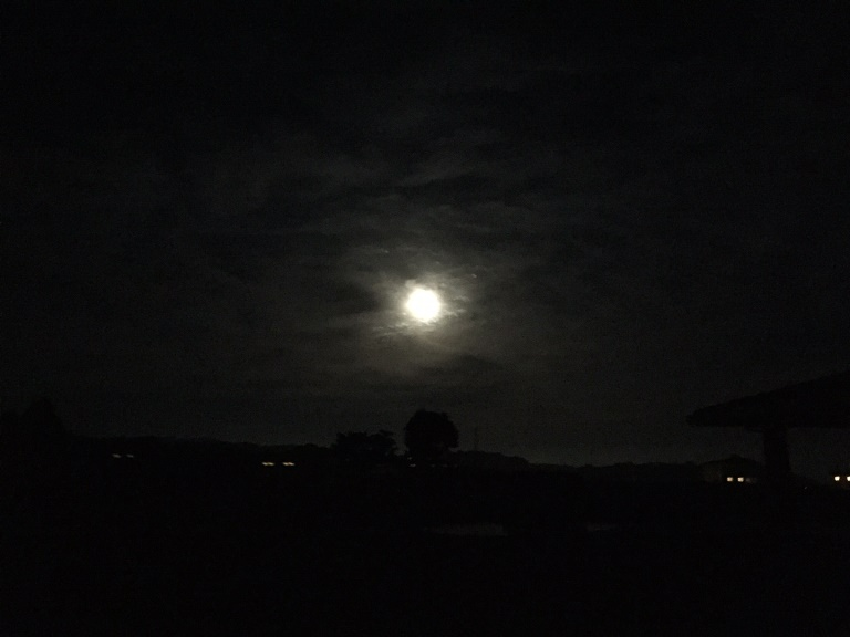 「 ~ 月が大きく見えました ~ 」