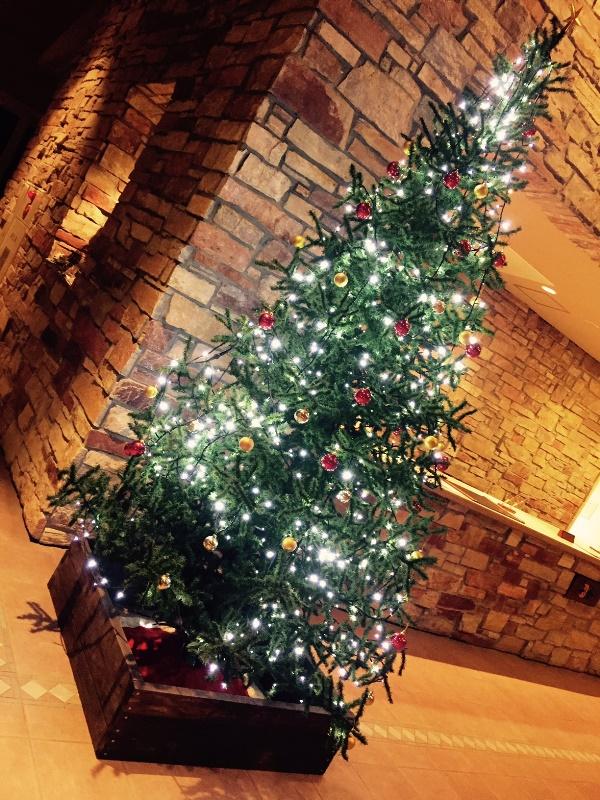 「 ~ もうすぐクリスマスですね! ~ 」