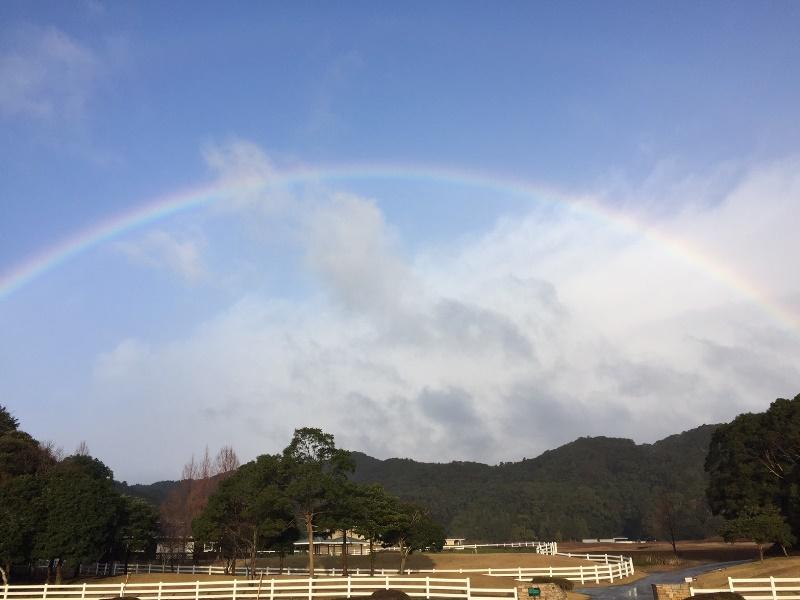 「 ~ 1月9日 大きな虹が出ました ~ 」