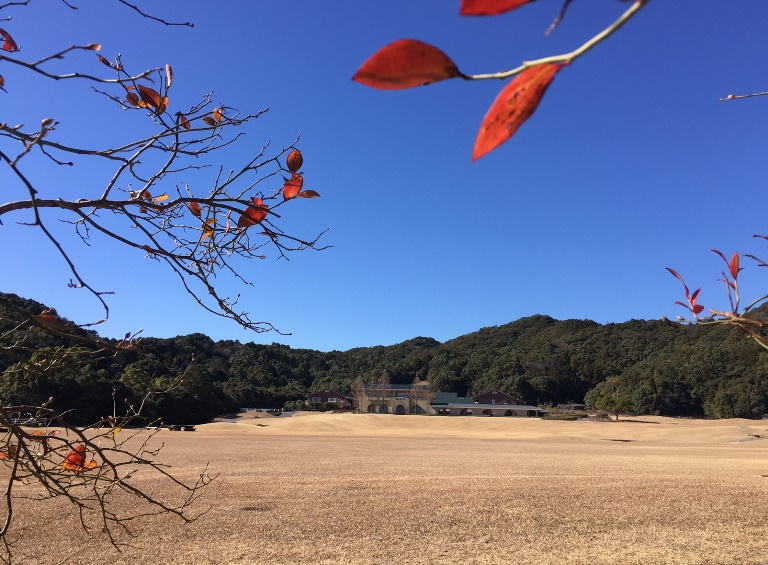 「 ~ ブルーベリー畑からの景色 ~ 」