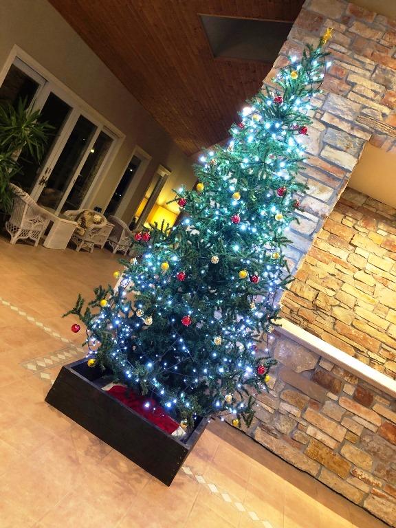 ~ クリスマスの飾り付け・ホテルロビー ~