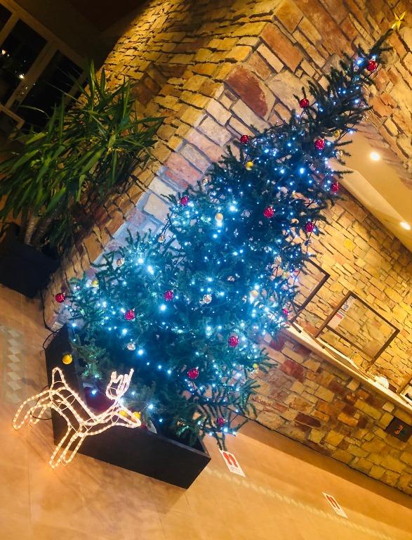 ~ ホテルのクリスマスツリー ~