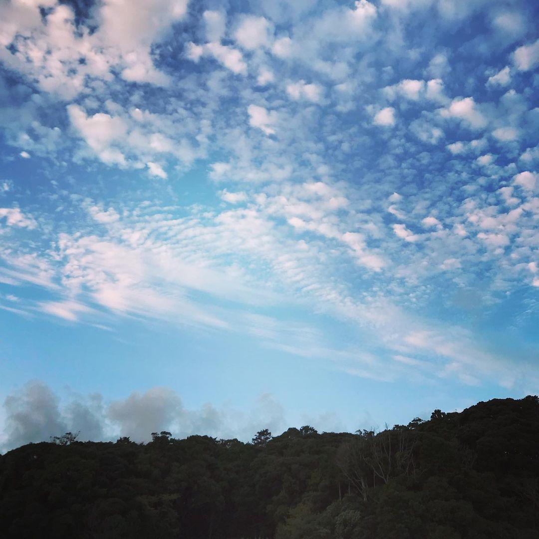 ~ 鱗雲 ~