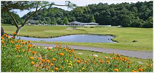 163 acre garden